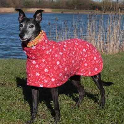 Euro Greyhound Coats Fleece In Snowflakes