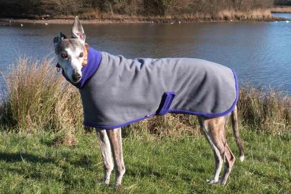 charcoal with purple greyhound fleece coat