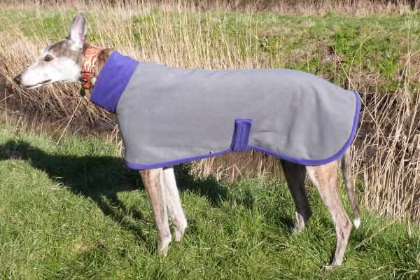 greyhound fleece coat in charcoal with purple