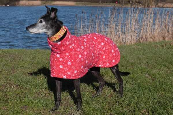 lurcher fleece coat in snowflake design