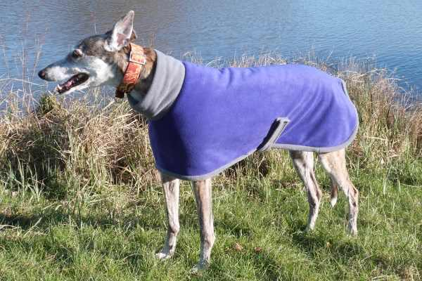 purple with charcoal greyhound fleece coat