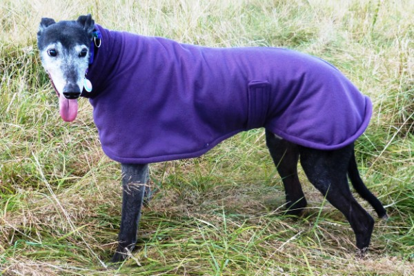 Greyhound Lurcher Whippet Imperial Fleece Coat