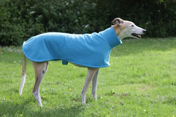 greyhound lurcher whippet fleece coat in turquoise