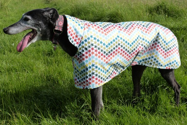 Greyhound Raincoat in Five Star General Fabric from Milgi Coats