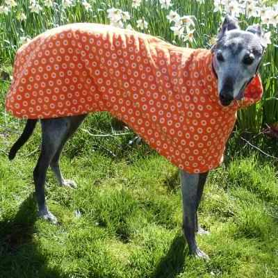 new zealand Greyhound Coats Fleece In Cosmic Orange
